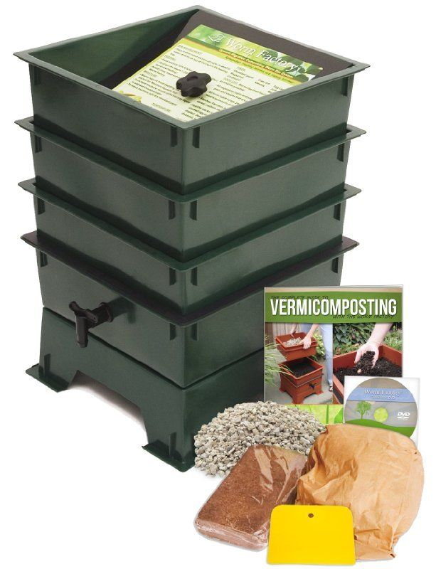 worm-compost-at-home